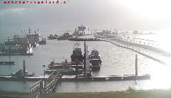 Webcam Nes Hafen